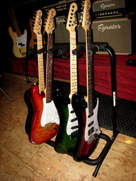 Vanz Guitars stock