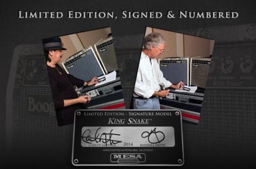 hand-signed-king-snake